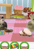 Petz Tierbaby-Schule für Nintendo DS