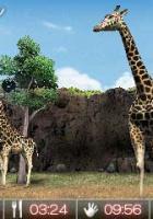 Animal Resort: Erste Infos zum 3DS-Spiel
