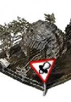 Trüffelschweinzucht in Farmerama