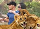 Wildlife Park 3 erscheint am 25. März