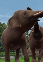 Zoo Resort: Ubisoft kündigt 3D-Zoo-Simulation für Nintendo 3DS an