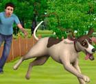 Die Sims 3 Einfach tierisch jetzt erhältlich