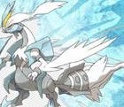 Pokémon Schwarze & Weiße Edition 2: Neue Infohäppchen zum DS-Spiel