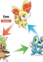 Pokémon X und Pokémon Y: neue Details