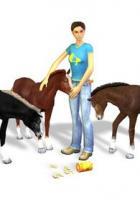 Nintendo DS – 3in1: Mein Pferd + Mein Gestüt + Mein Gestüt – Ein Leben für die Pferde