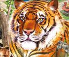 Zoo Park: Tierpark-Simulator für Windows & Mac