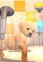 Haustier-Simulation PlayStation Vita Pets angekündigt