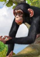 'Xbox 360'-Demo für Zoo Tycoon zum Download